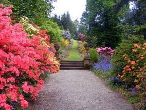 ديكورات حدائق, تصميم حديقة منزل, تصميم حديقة منزل بسيطة, ديكورات حدائق منزلية